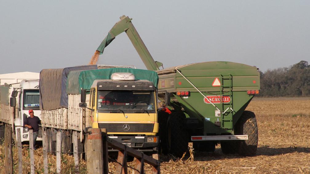 Resultado de imagen para camiones transportando cereales