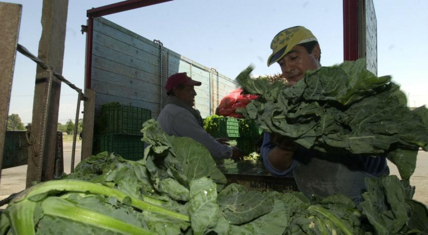 10 medidas para proteger el cinturón verde de Córdoba  5c454bf38530
