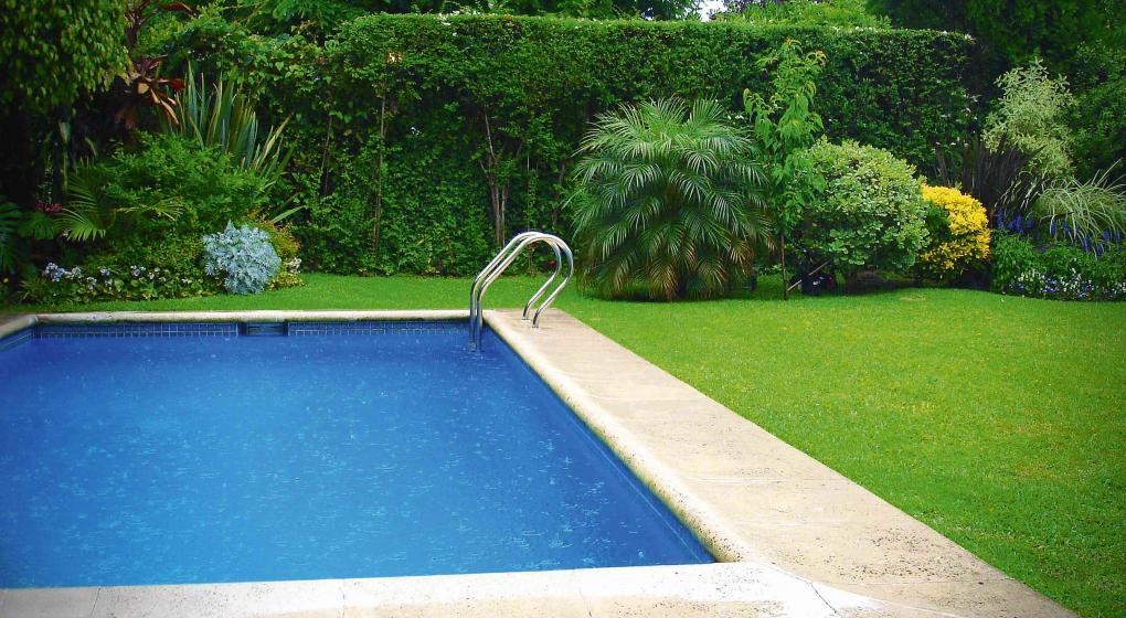 Piletas las aliadas del verano noticias al instante for Pileta piscina