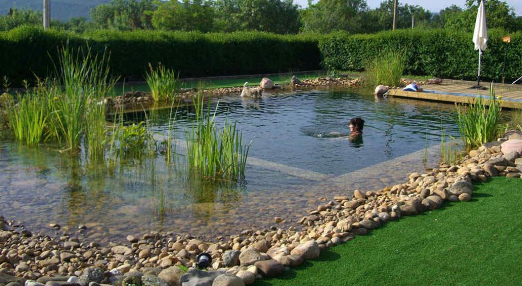 Piscinas ecol gicas una tendencia que crece en el mundo for Filtro piscina natural