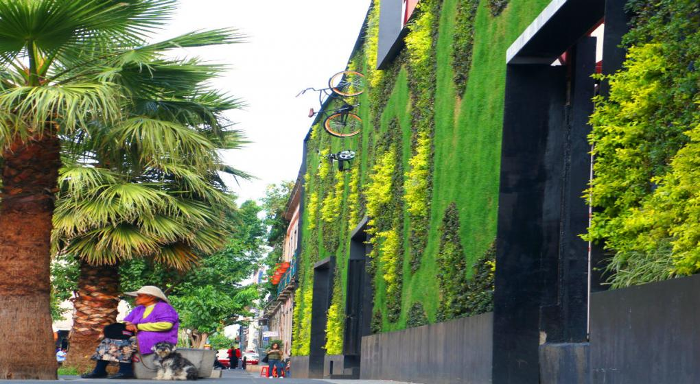 Mir los jardines verticales m s espectaculares del mundo for Jardines espectaculares