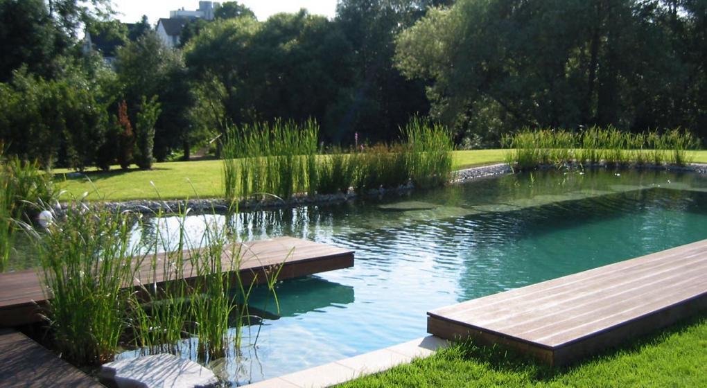 c mo refrescarse naturalmente las piscinas ecol gicas