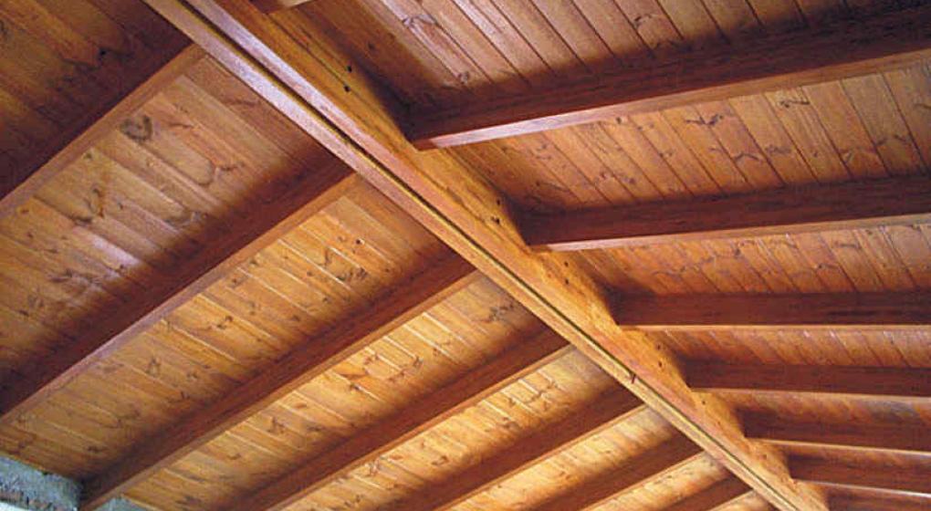 Naturales y c lidos por excelencia la voz - Precio techo madera ...