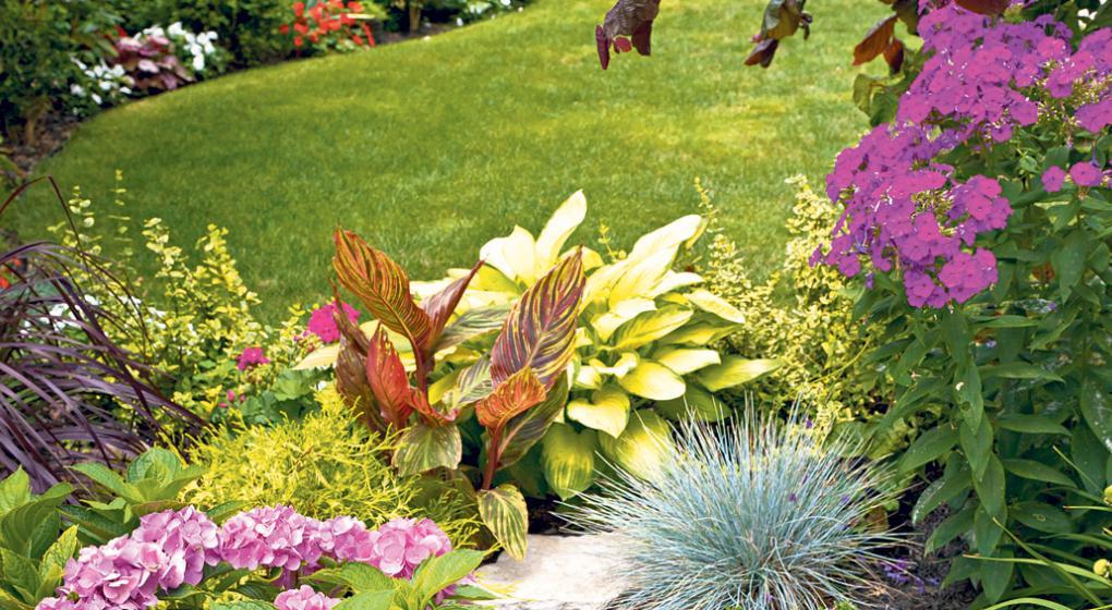 Paisajismo jard n florido noticias al instante desde for Jardin 7 colores bernal