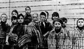 Campos de exterminio. Prisioneros en Auschwitz, antes de ser liberados por el Ejército Rojo en 1945 (AP / Archivo).