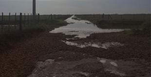 Cuáles son las regiones en las que más agua cayó en las últimas 24 horas
