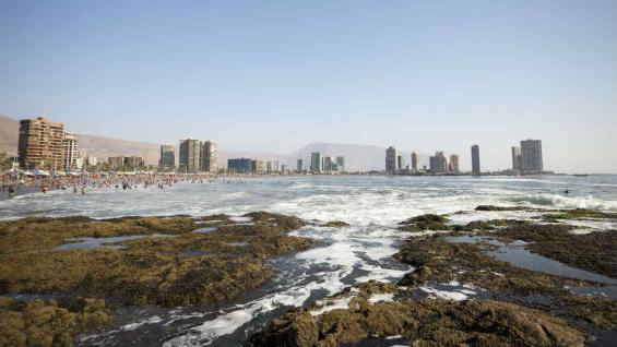 Iquique es una ciudad costera en el norte de Chile, al oeste del desierto de Atacama. (Sernatur)