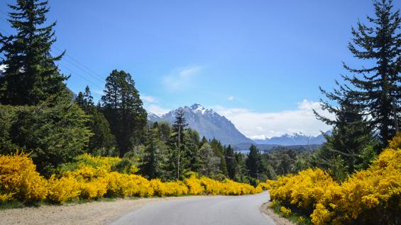 Rélax y aventura, el combo para disfrutar en Bariloche. (Foto: Turismo Bariloche).