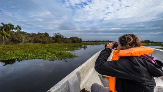 Esteros del Iberá. Naturaleza, vida silvestre y área protegida. (123RF)