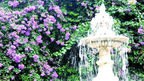 Fuente de la plaza San Martín.