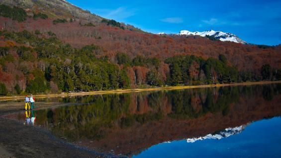 Parque Nacional Lanín. Espejos de agua, ríos caudalosos y otros de aguas calmas se mezclan con centenarios árboles. (Parque Nacional Lanín)