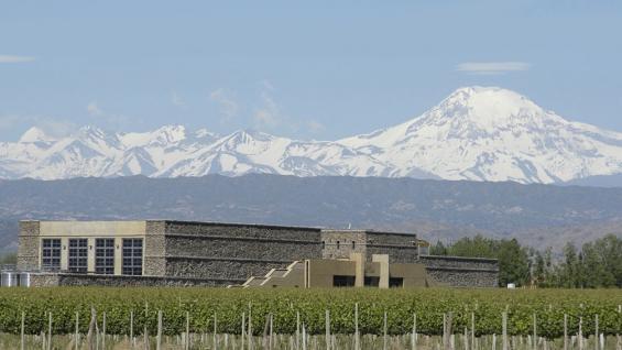Bodega Séptima. Sus viñedos están custodiados por las montañas nevadas de la cordillera de los Andes.