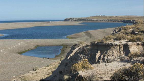 La costa de la provincia de Chubut presenta un accidente geográfico único, con acantilados y restinga. (Mario Cherrutti)