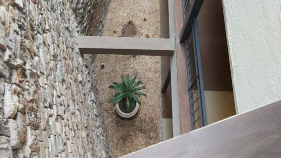 Los pisos del hotel y algunas paredes son de adoquines recuperados de viejos galpones del interior de Córdoba. (Soledad Soria)