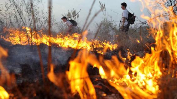 INCENDIO EN LA RESERVA SAN MARTÍN. Dos adolescentes contra las llamas (La Voz/A. Carrizo).