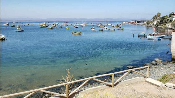 Tongoy es un balneario ubicado a unos 46 km de Coquimbo que vale la pena conocer. (La Voz)