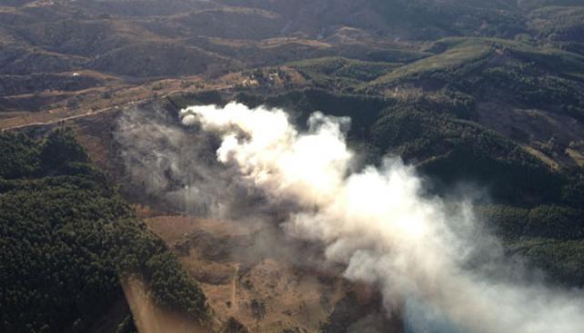 En Villa Berna. El miércoles, un foco de fuego se generó en pinares cerca de ese paraje de Calamuchita (La Voz).