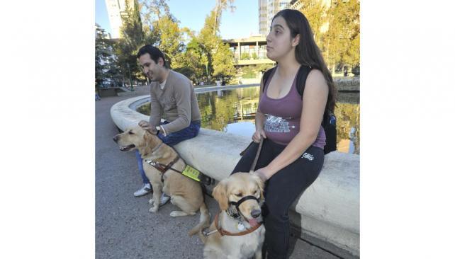 Descanso. Mariano y Cecilia son los propietarios de dos de los tres perros guía que hay en la ciudad de Córdoba (Sergio Cejas/LaVoz).