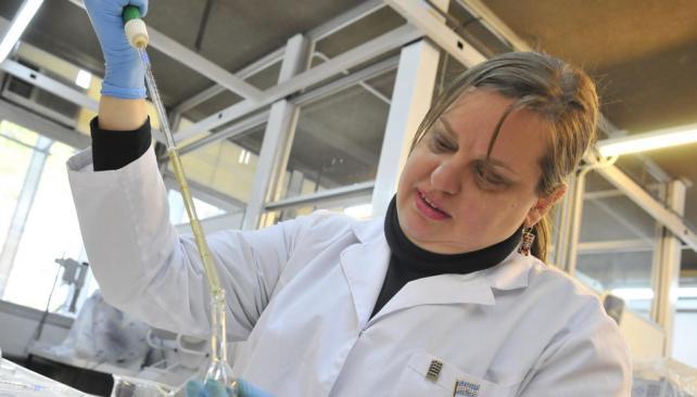 Composición magistral. Romañuk mejoró la eficacia de la morfina con el agregado de ácidos grasos Omega-3 (Ramiro Pereyra/LaVoz).