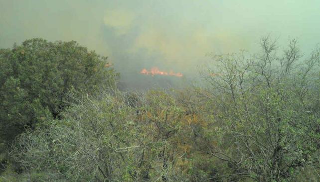 BOMBEROS. Controlan un incendio en el Valle de Punilla (Gentileza Federico Vernocchi).
