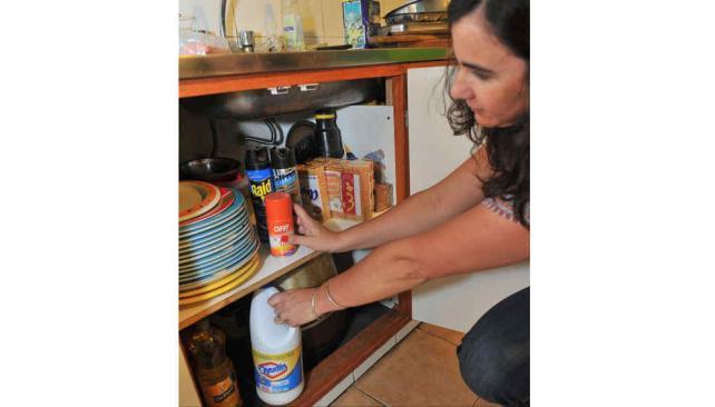 PLAGUICIDAS DOMÉSTICOS Tóxicos en el hogar.
