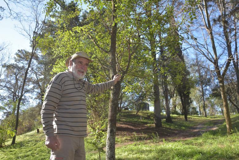 """El """"Rey del bosque"""": hace 40 años siembra un arboreto de 22 hectáreas"""