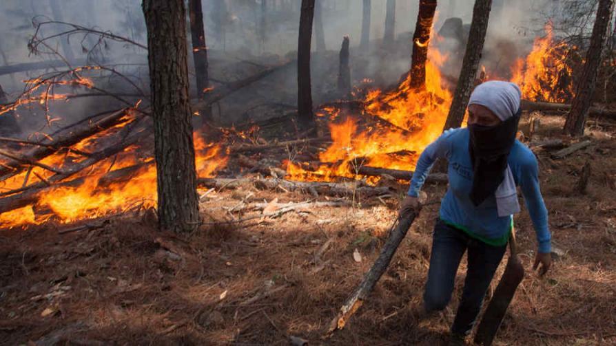 CALAMUCHITA. La lucha contra el fuego (Nelson Torres).